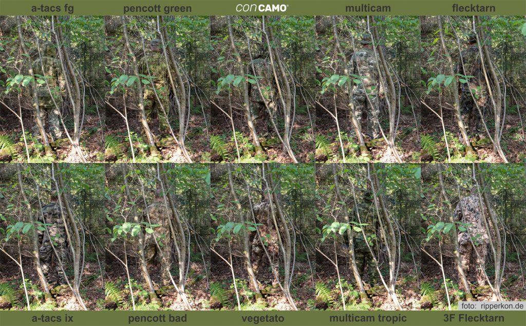 Vergleich-Wald-Laub1