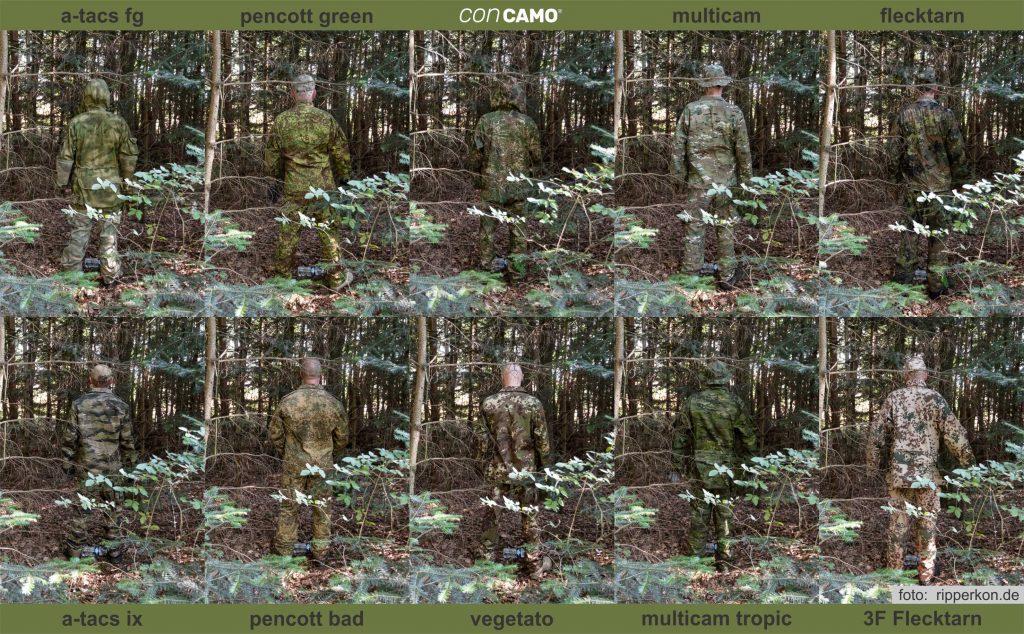 Vergleich-Wald-Tanne1